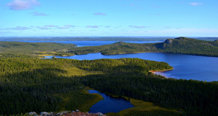 Terra Nova Scotia National Park