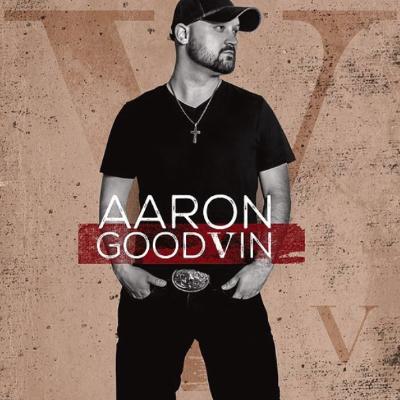 Aaron Goodvin Bars & Churches