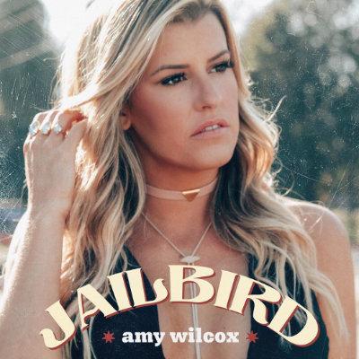 Jailbird - Amy Wilcox